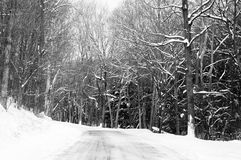 Χιονώδης δρόμος Στοκ Εικόνες