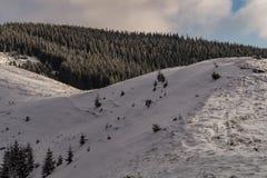 Χιονώδης σπονδυλική στήλη βουνών Στοκ Εικόνες