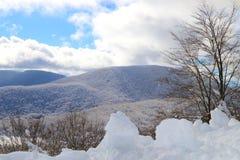 Χιονώδης στα mountais Στοκ Εικόνα