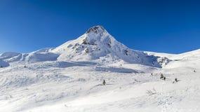 Χιονώδης σύνοδος κορυφής στοκ φωτογραφίες