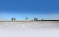 Χιονώδης τομέας Στοκ Φωτογραφίες
