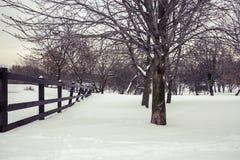 χιονώδης χειμώνας κήπων σχεδίου ομορφιάς ανασκόπησής σας Στοκ φωτογραφία με δικαίωμα ελεύθερης χρήσης