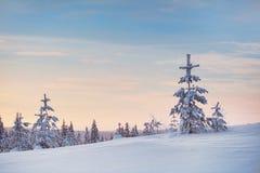 Χιονώδης χειμώνας και δέντρα Στοκ Φωτογραφία