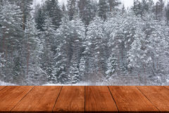 Χιονώδης χειμώνας στο δασικό υπόβαθρο Άποψη από το σκοτεινό ξύλινο GA Στοκ εικόνα με δικαίωμα ελεύθερης χρήσης