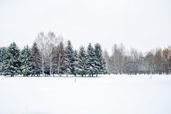 χιονώδης χειμώνας τοπίων Στοκ Εικόνα
