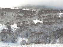Χιονώδης λόφος βουνών στοκ εικόνες