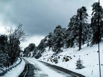 χιονώδης Στοκ εικόνα με δικαίωμα ελεύθερης χρήσης