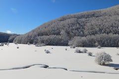 χιονώδης Στοκ Εικόνες