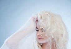 χιόνι βασίλισσας Στοκ εικόνα με δικαίωμα ελεύθερης χρήσης
