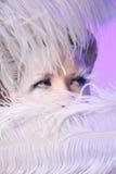 χιόνι βασίλισσας Στοκ φωτογραφία με δικαίωμα ελεύθερης χρήσης