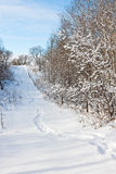 χιόνι βημάτων Στοκ φωτογραφία με δικαίωμα ελεύθερης χρήσης