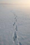 χιόνι βημάτων Στοκ φωτογραφίες με δικαίωμα ελεύθερης χρήσης