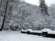 χιόνι γεφυρών Στοκ Εικόνες