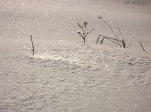 χιόνι διαμαντιών Στοκ φωτογραφία με δικαίωμα ελεύθερης χρήσης