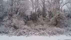 Χιόνι ημέρας γενεθλίων Στοκ Φωτογραφία