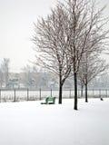 χιόνι ημέρας στοκ εικόνες