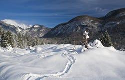 χιόνι ιχνών Στοκ φωτογραφίες με δικαίωμα ελεύθερης χρήσης