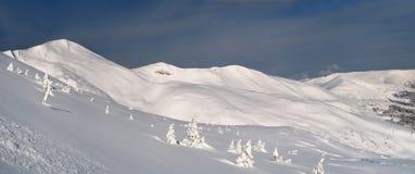χιόνι κάλυψης Στοκ Εικόνες