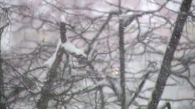 Χιόνι και δέντρα στη Ρωσία φιλμ μικρού μήκους
