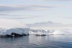 χιόνι καλύψεων Στοκ Φωτογραφίες