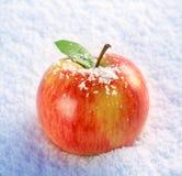χιόνι μήλων Στοκ φωτογραφία με δικαίωμα ελεύθερης χρήσης