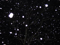 χιόνι νύχτας Στοκ εικόνα με δικαίωμα ελεύθερης χρήσης