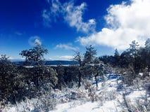Χιόνι πάγου Στοκ εικόνες με δικαίωμα ελεύθερης χρήσης
