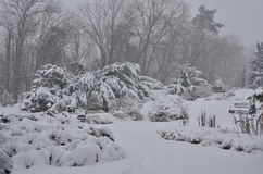 χιόνι πάρκων Στοκ Εικόνες