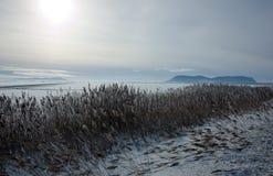 χιόνι πεδίων Στοκ Φωτογραφίες
