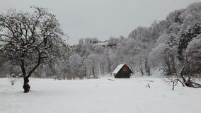 Χιόνι που πέφτει στο αγροτικό χωριό απόθεμα βίντεο