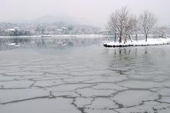 χιόνι πτώσης westlake Στοκ Φωτογραφίες