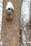 Χιόνι σε ετοιμότητα - που γίνεται birdhouse Στοκ Εικόνα