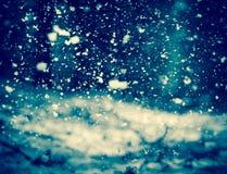 Χιόνι στα δάση Στοκ φωτογραφίες με δικαίωμα ελεύθερης χρήσης