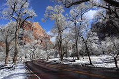 Χιόνι στα φαράγγια Zion! Γιούτα στοκ φωτογραφίες με δικαίωμα ελεύθερης χρήσης