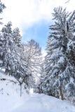 χιόνι στα όρη Στοκ Εικόνα