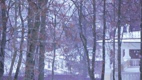 Χιόνι στην οδό φιλμ μικρού μήκους