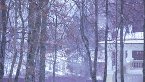 Χιόνι στην οδό απόθεμα βίντεο