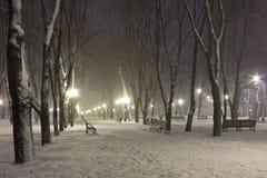 Χιόνι στη λεωφόρο σε μια χειμερινή κρύα νύχτα Στοκ εικόνες με δικαίωμα ελεύθερης χρήσης