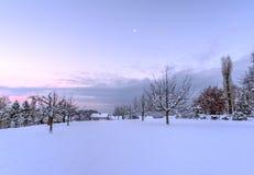 Χιόνι στη Ζυρίχη Στοκ Εικόνα