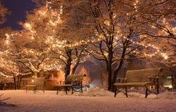 Χιόνι στο πάρκο Στοκ φωτογραφίες με δικαίωμα ελεύθερης χρήσης