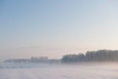 χιόνι τοπίων ομίχλης παραμυθιού Στοκ Εικόνες