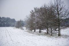 χιόνι τοπίων παραμυθιού Στοκ εικόνες με δικαίωμα ελεύθερης χρήσης