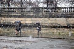 χιόνι του Παρισιού Στοκ φωτογραφίες με δικαίωμα ελεύθερης χρήσης