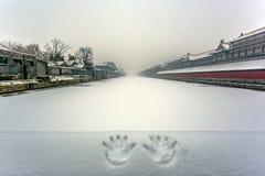 Χιόνι του Πεκίνου Στοκ φωτογραφία με δικαίωμα ελεύθερης χρήσης