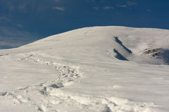 Χιόνι του πρώτου φθινοπώρου Στοκ φωτογραφία με δικαίωμα ελεύθερης χρήσης