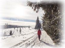 Χιόνι χειμερινών χωρών των θαυμάτων Περπάτημα κοριτσιών στοκ εικόνα