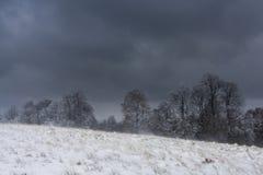 Χιόνι χτυπήματος χιονοθύελλας Στοκ φωτογραφία με δικαίωμα ελεύθερης χρήσης