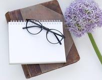 Χλεύη σημειωματάριων επάνω για το έργο τέχνης με πορφυρά allium και τα γυαλιά Τοπ όψη τοποθετήστε το κείμενο λουλούδι φρέσκο Στοκ εικόνες με δικαίωμα ελεύθερης χρήσης