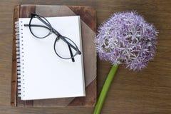 Χλεύη σημειωματάριων επάνω για το έργο τέχνης με πορφυρά allium και τα γυαλιά Τοπ όψη τοποθετήστε το κείμενο λουλούδι φρέσκο Στοκ φωτογραφίες με δικαίωμα ελεύθερης χρήσης