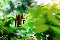 χλωρίδα, δέντρο, φύλλο, φυσικό, χρώμα, κόκκινο, πράσινο, λουλούδι, floral, φύση, υπόβαθρο, κήπος, ομορφιά, φυτό, όμορφο στοκ εικόνες